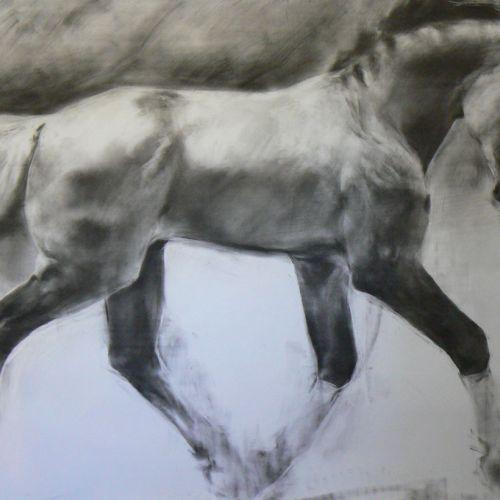 Horse in fade