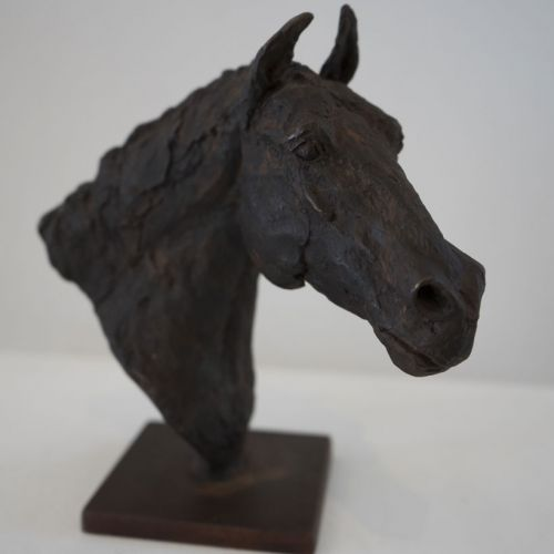 Small Thoroughbred Bust