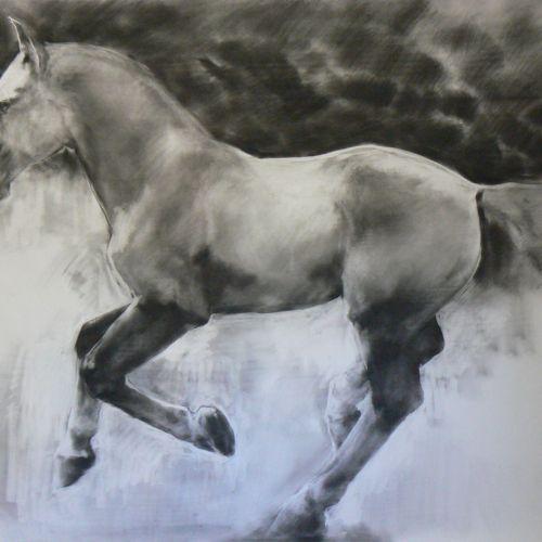 Thunderstorm horse